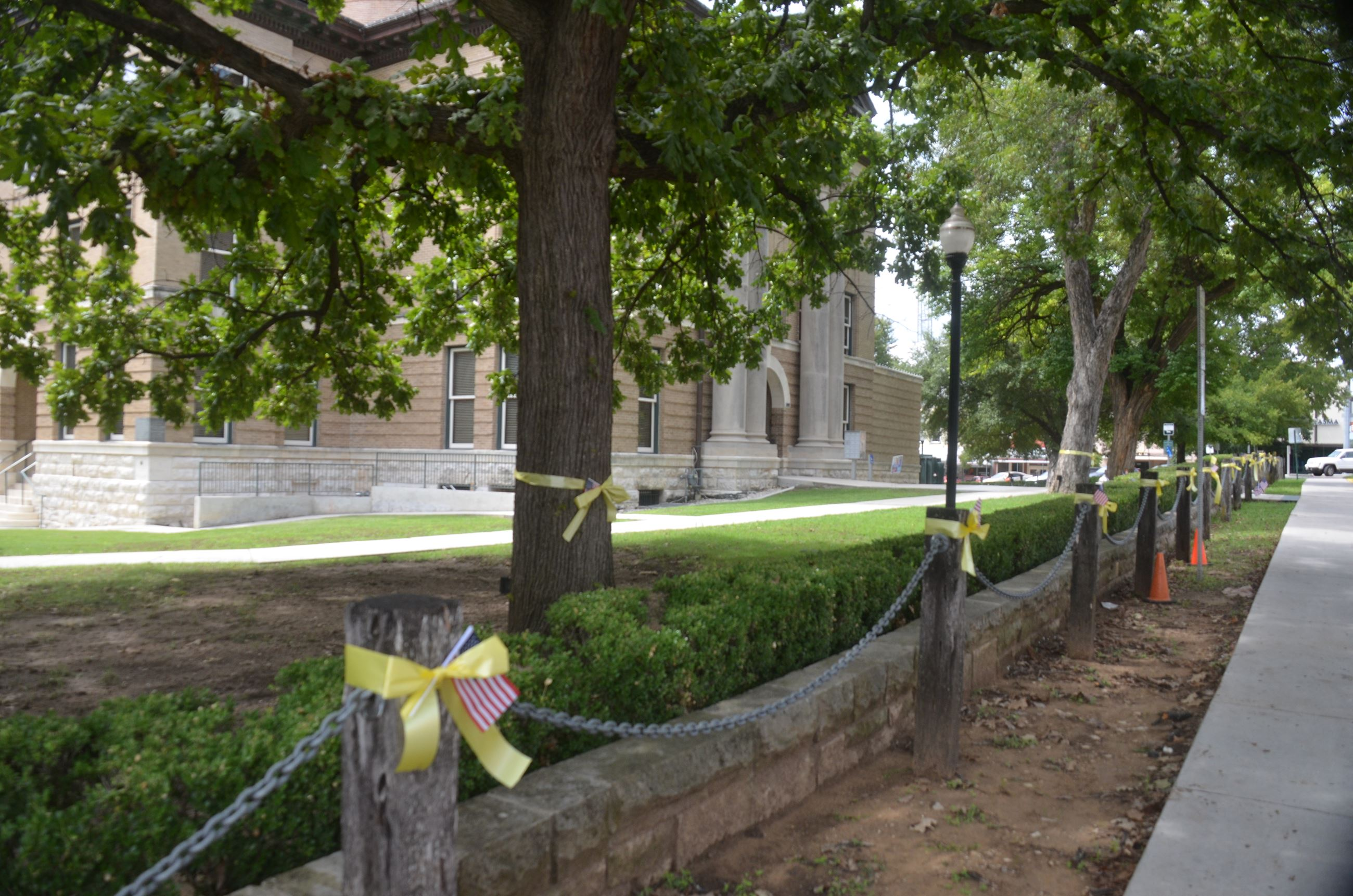 A line of trees tied with a yellow ribbon in front of a courthouse